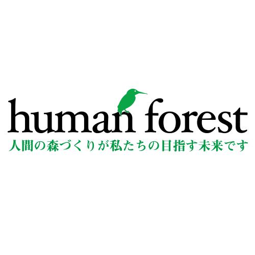 株式会社ヒューマンフォレスト